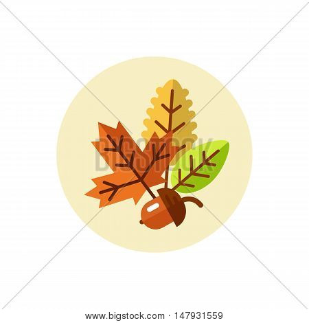 Flat design vector illustration of autumn symbols - leaves of maple, oak, poplar and acorn.