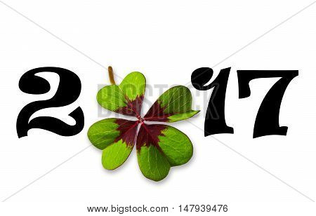 2017 with clover leaf on white background