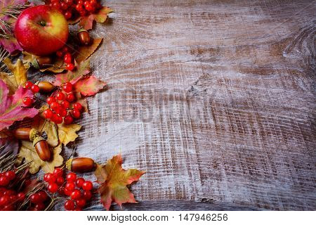 Border of fruits and fall leaves on the dark wooden background. Thanksgiving background with seasonal fruits. Copy space