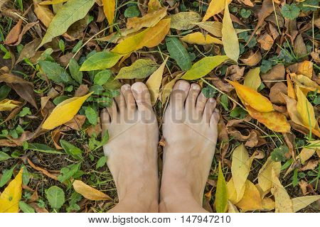 Two Bare Feet Stepping On Dry Leaves.