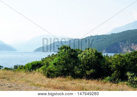 Untouched  area coast of the Adriatic Sea on a summer day
