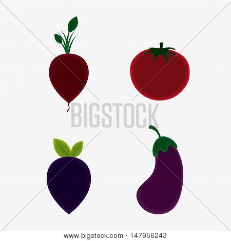 Onion eggplant and tomato icon. Vegetarian cuisine organic and healthy food theme. Colorful design. Vector illustration
