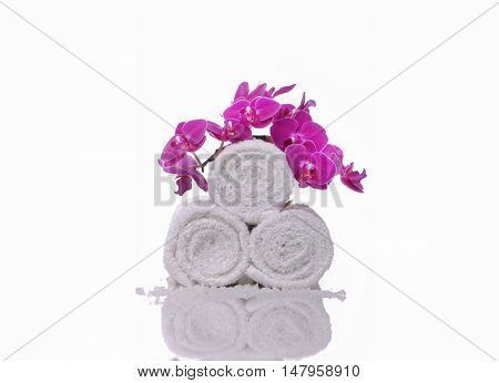 pink orchid on white roller towel