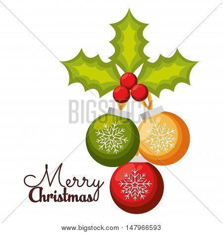 merry christmas balls holly berry design vector illustration eps 10