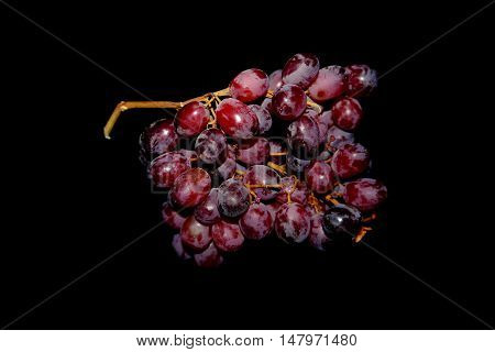 grapes painted in the colors of autumn. everything is ready to come. a clear picture