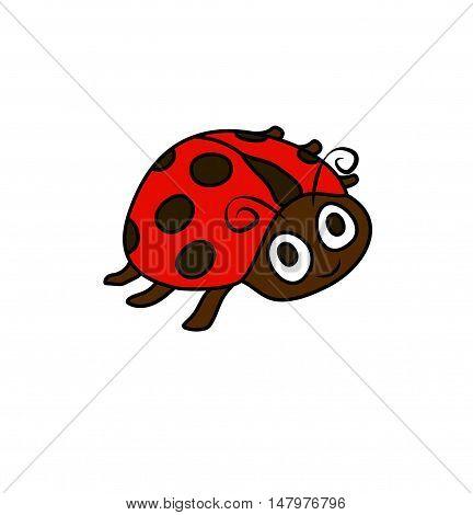 ladybug. One illustration picture of a ladybug drawn on the white backstage.