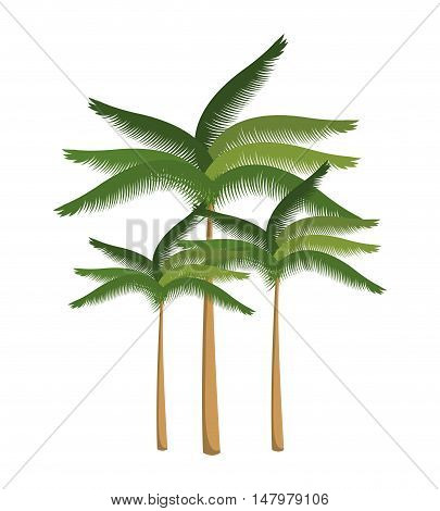 palm tree beach design isolated vector illustration eps 10