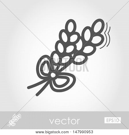 Spikelets of wheat outline icon. Harvest. Thanksgiving vector illustration eps 10