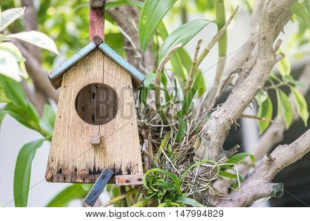 Closeup old little wooden house for bird hang at tree in the garden textured background