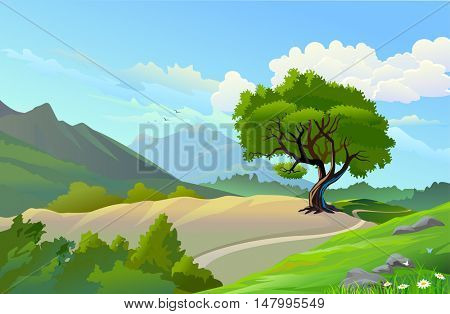 SCENIC OUTDOORS 'MOUNTAIN AND LONELY PATHWAY'