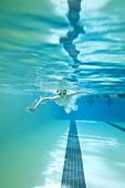 picture of breast-stroke  - little boy swimming breast stroke shot underwater - JPG