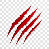 Claw scratch mark. Vector bear or tiger paw claw scratch bloody trace. Shredded paper poster