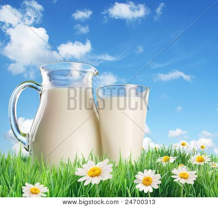 Milk jug and glass on the grass with chamomiles. On a background of the summer sky with clouds.