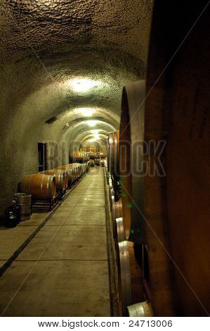 Cellar of wine barrels.