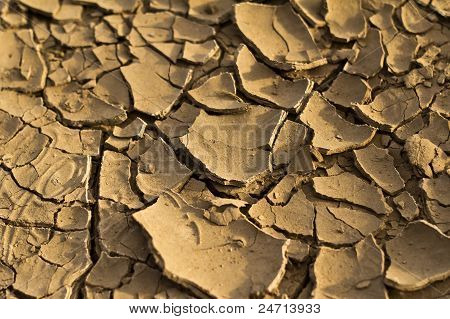 Close-up of cracked land