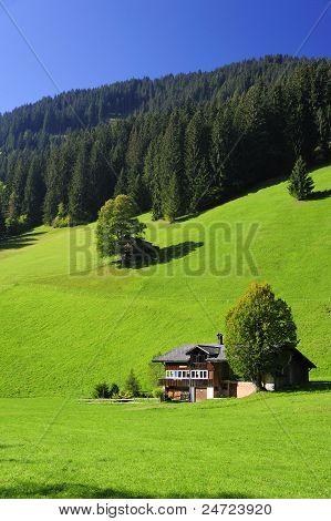 Swiss Scene