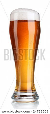 beer in a glass isolated on white