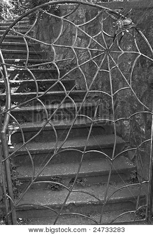Spider And Web Iron Gate With Stairs
