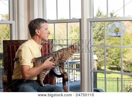 Cat Watching Bird On Feeder