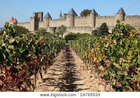 Carcassonne from the vineyard. France
