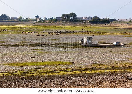 Ebb Landscape In Western Brittany