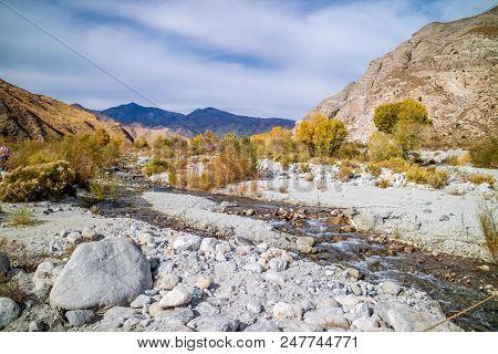 A Flowing Water In A