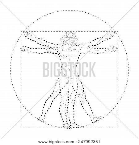 Vitruvian Man Or Homo Vitruviano