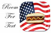 4th of July. A hot dog in a bun with yellow mustard on an American flag paper plate. isolated on whi poster