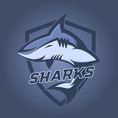 Modern Professional Logo For Sport Team. Shark Mascot. Sharks, Vector Symbol On A Dark Background poster