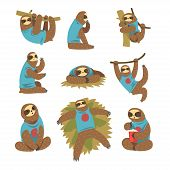 Funny Sloths Set, Lazy Exotic Rainforest Animal Character In Different Postures Vector Illustrations poster