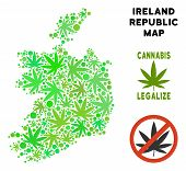 Royalty Free Cannabis Ireland Republic Map Collage Of Weed Leaves. Template For Narcotic Addiction C poster