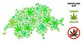Royalty Free Cannabis Swissland Map Composition Of Weed Leaves. Template For Narcotic Addiction Camp poster