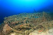 Ghost net. Discarded fishing net pollutes reef  poster