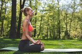 Profile Of Fit Woman Meditating In Green Park. Female Is Sitting On Mat In Lotus Pose. She Is Enjoyi poster