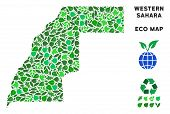 Ecology Western Sahara Map Collage Of Floral Leaves In Green Color Tinges. Ecological Environment Ve poster