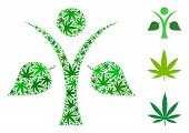 Ecology Man Mosaic Of Weed Leaves In Variable Sizes And Green Shades. Vector Flat Weed Icons Are Uni poster