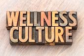 wellness culture - word abstract in vintage letterpress wood type poster