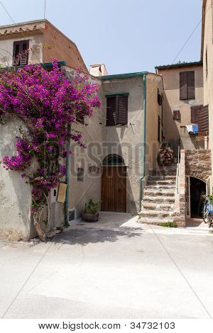 Old House At Capraia