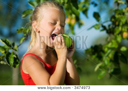 Nibble Of A Sweet Apple