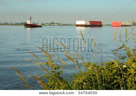 Tugboat Towing Barges, Fraser River Morning