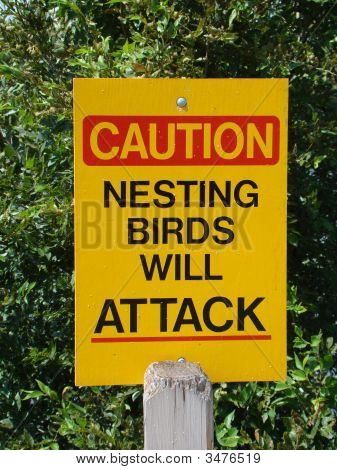 Nesting Birds Warning Sign