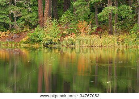 Lake Of Woods