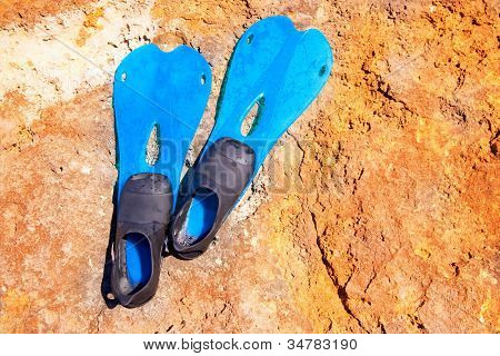 blue scuba diving fins on sunny summer day over a rock
