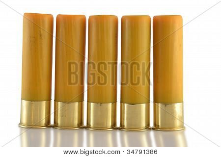 20 Guage Shotgun Shells Standing In A Row