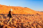 Cute little girl enjoying stunning sunset over red sand dunes in Namib desert poster
