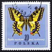Postage stamp Poland 1967 Old World Swallowtail, Butterfly