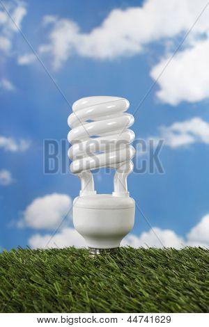 Compact fluorescent lamp energy saving light