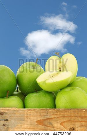 "freshly harvested ""Granny Smith"" apples in a wooden crate against a blue sky with clouds"