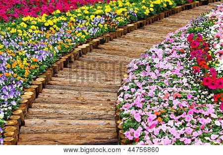 wooden path in flower bed