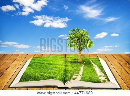 Open book on wooden boards with grass and road with tree on pages on sky background